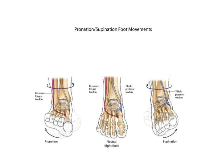Crackling foot joints children