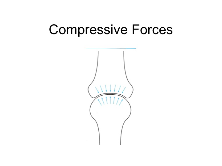Compressive Forces